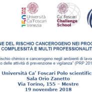 LA PREVENZIONE DEL RISCHIO CANCEROGENO NEI PROCESSI DI LAVORO: COMPLESSITÀ E MULTI PROFESSIONALITÀ